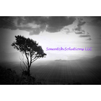 Sawatch Solutions Logo